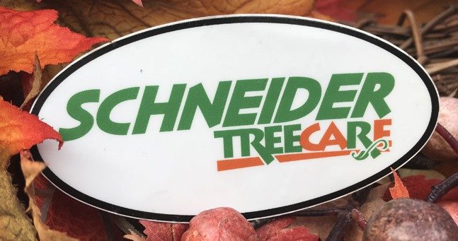 Schneider Tree Care sticker on top of colored leaves