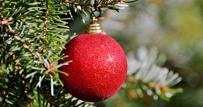 red Christmas ornament on tree