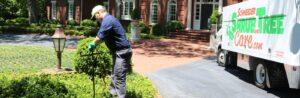 tree service professional applying fall shrub and tree fertilization