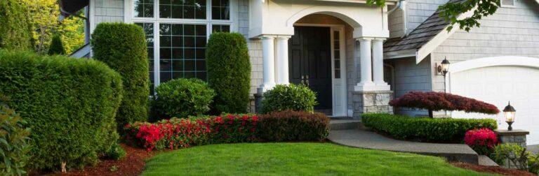 beautiful shrubs surround a home