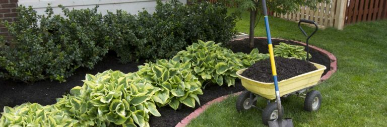 yellow wagon full of mulch in front of bed of shrubs