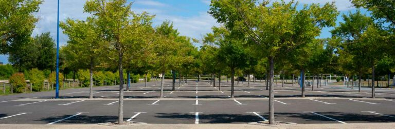 large commercial parking lot with many trees