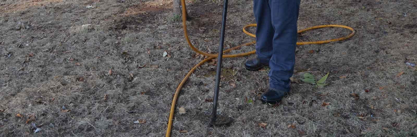 tree professional applying vitamins to tree roots